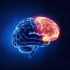 Psiquiatria. Prevenir, evaluar, diagnosticar, tratar y rehabilitar a las personas con trastornos mentales