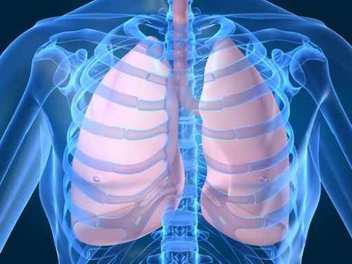 Neumologia. Estudio del aparato respiratorio. Enfermedades pulmonares.